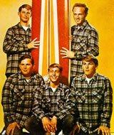 foto - Vinyl-Lp : Beach Boys