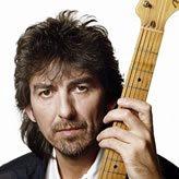 foto - Vinyl-Lp : George Harrison